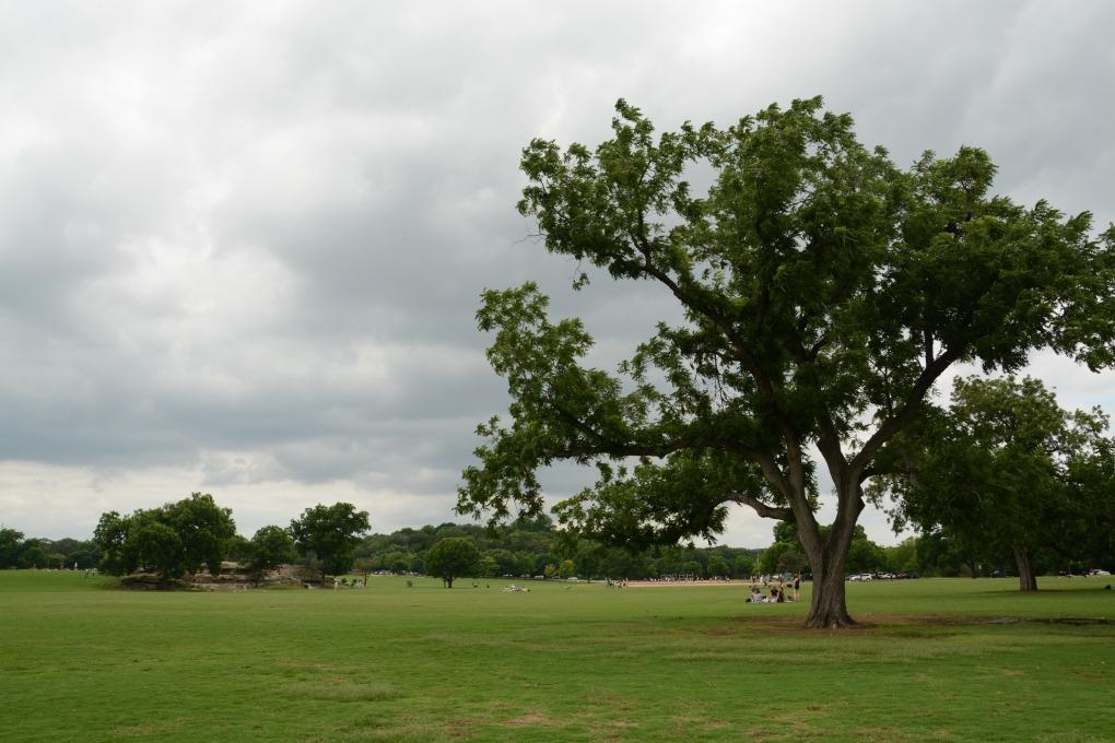 Zilker Metro Park