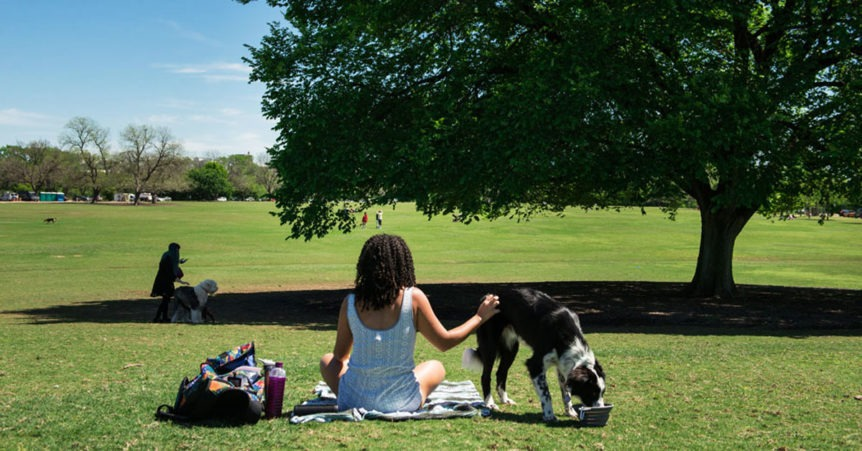 girl with dog at zilker park apf