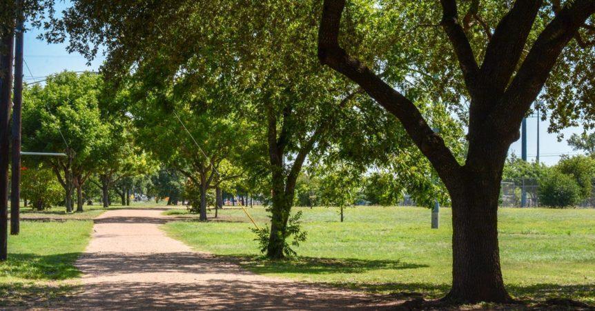 neighbors experiencing homelessness on parkland
